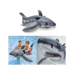 Weißer Haifisch Aufblasbares Intex 57525 Von 173x107 Zentimeter. | Poolsweb