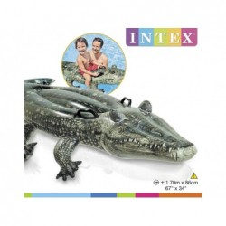Aufblasbares Krokodil Intex 57551 Von 170x86 Zentimeter. | Poolsweb